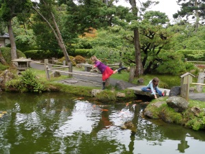 Checking out the Koi fish in theThe Japanese Gardens