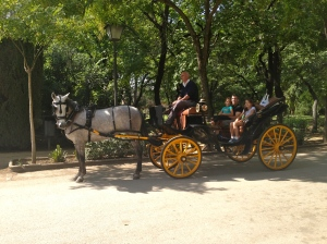 Carriage ride in the Parque Maria Luisa