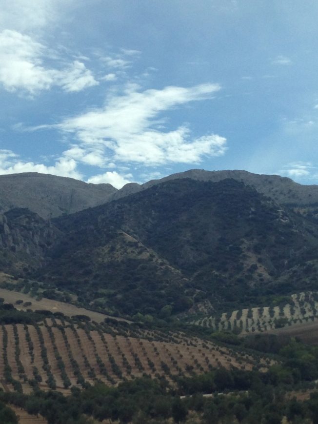 Beautiful hills on the way to Sevilla