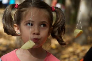 Delicious apples!