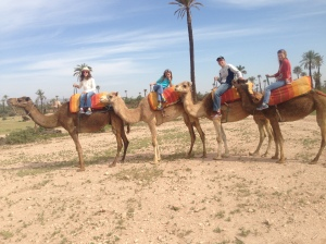 Here we go, ready to ride some Dromedary!